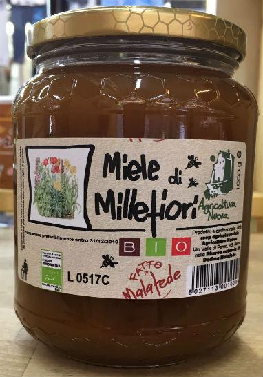 miele di millefiori bio